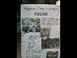 TPz 1 Fuchs FlaFü