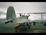 OA-12 Duck