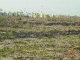 2-6 Feb 2004
