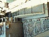 Olifant ARV