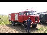 LF IFA W 50